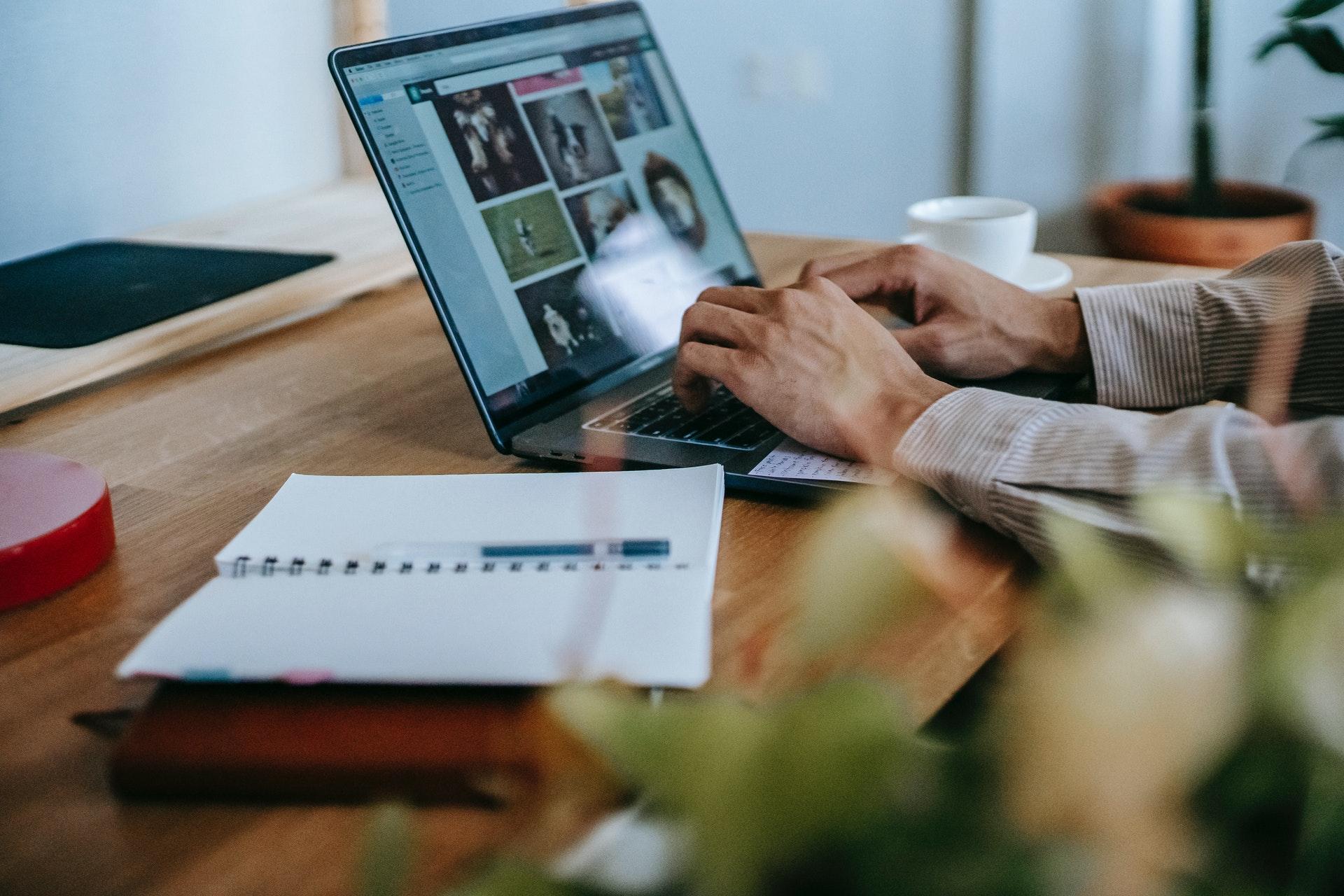 Online business: 3 mestieri inventati con internet